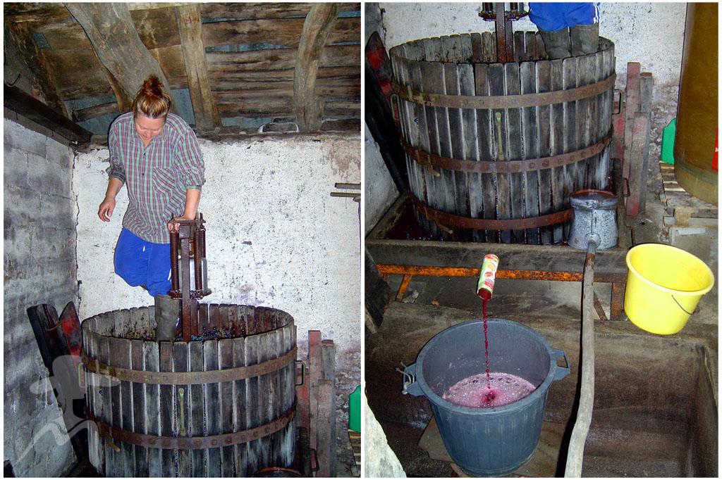 Пресс винограда своими руками