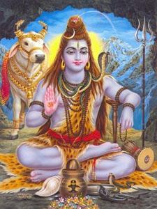 Индия: йоги, Болливуд, море
