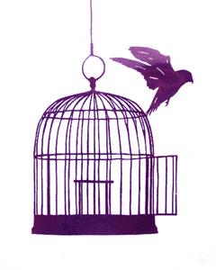 Стихи про птиц, выпускаемых из клетки