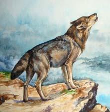 Басня «Собака и волк»