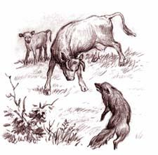 Отзыв о рассказе Ушинского «Бодливая корова»