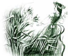 Отзыв о сказке Толстого «Иван да Марья»
